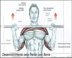 treino-de-ombros-desenvolvimento-pela-frente-com-barra