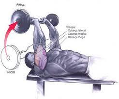 extensão-tríceps-testa