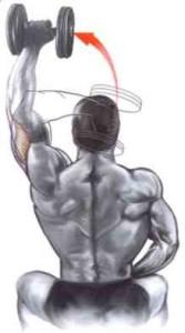 extensão-triceps-sentado-halter