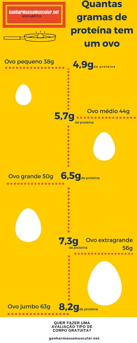 Quantas gramas de proteína tem um ovo - Infográfico