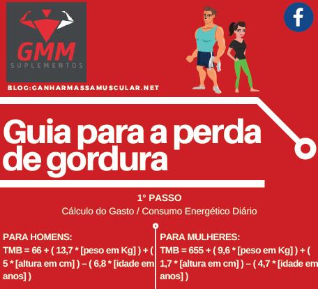 Infográfico Guia para a perda de Gordura